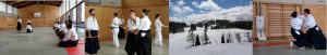 Aikido-Wochenlehrgang mit Jean-Luc Subileau