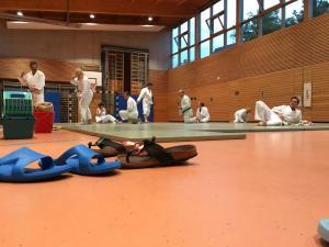 Aikido-Putztraining-20170726-4-sr